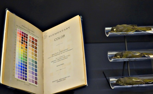 smithsoniancolor03-768x473